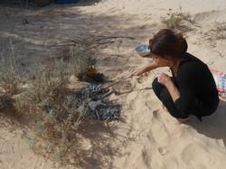 Cuisson dans le sable