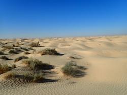 Nouiel Voyages Tunisie