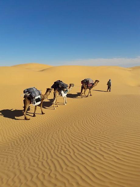 Trekking Nouiel Voyages
