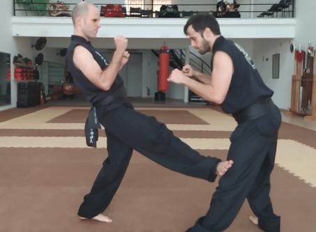 Os Chutes no estilo Choy Lay Fut de Kung Fu