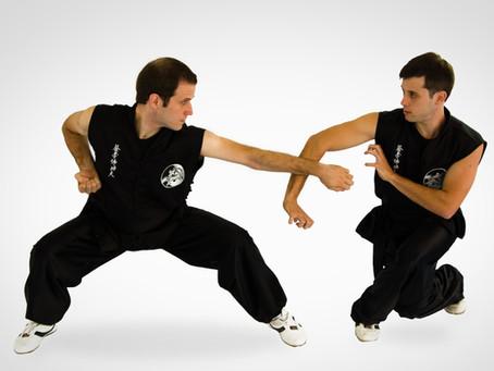 Choy Lay Fut - Formas tradicionais ou luta?