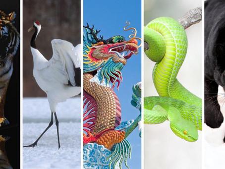 Conheça os Cinco Animais do estilo Choy Lay Fut de Kung Fu