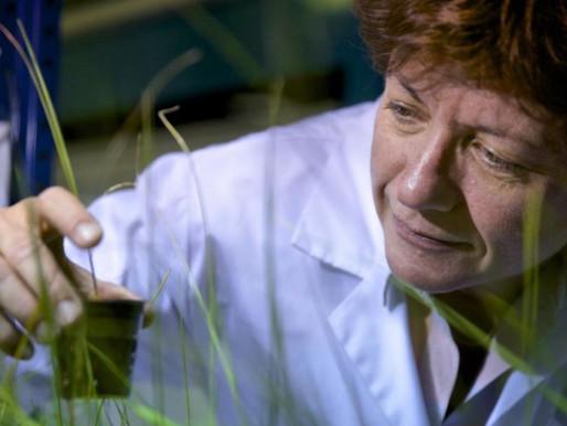 Portrait de chercheur : Claude Grison