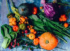 variety-of-vegetables-1458694 (1).jpg