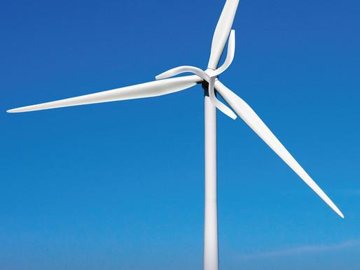 Éolienne et biomimétisme : top 5 des technologies inspirées du vivant