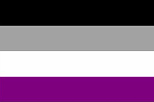 Asexual Pride Hand Flag