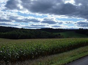 Cornfields_of_Hanover_Township,_Columbia