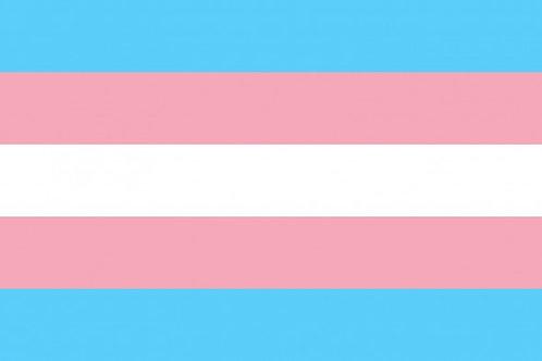 Transgender Pride Hand Flag