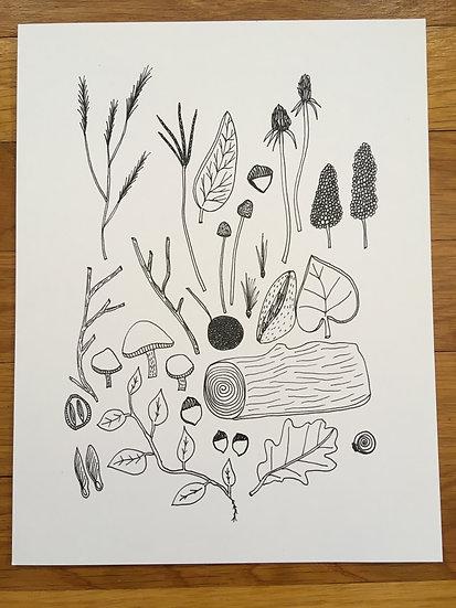Seeds - Art Print
