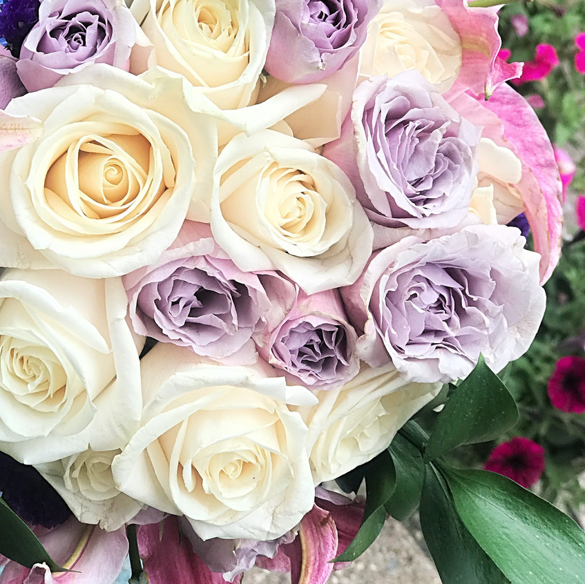 Garden roses and spray roses