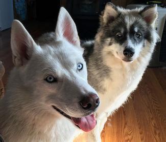 Maya and Kiska