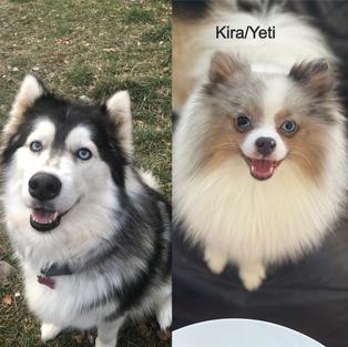 PARENTS: Kira/Yeti