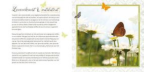 Demeter_brochure_bz.jpg