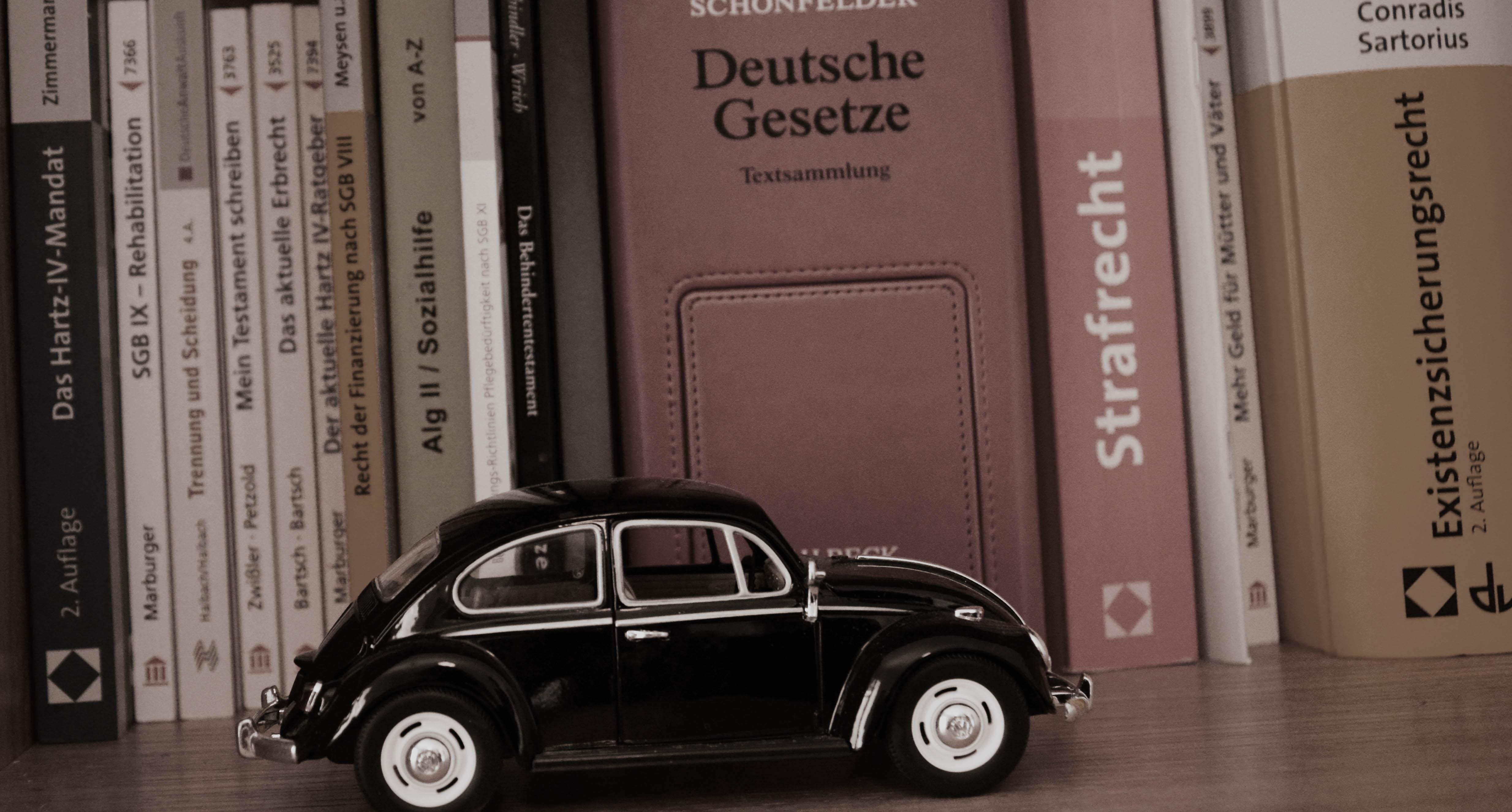 Bücher & Käfer.jpg