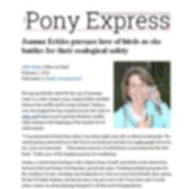 Pony article Feb 2018.JPG