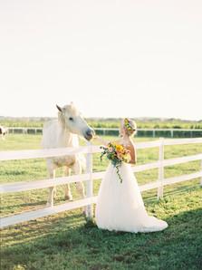 Rural Countryside Wedding