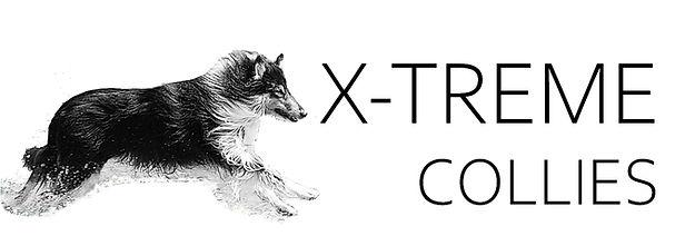 x-treme4.jpg