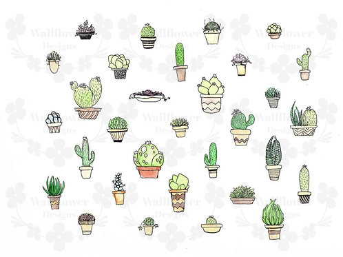 Succulents and Cacti - H