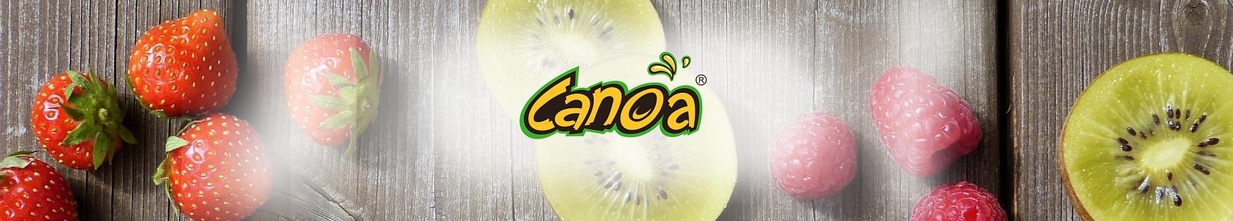 CANOA - PG WEB2-01.png