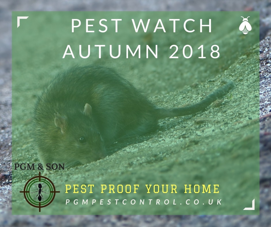 PGM & SON is an established Pest Control Company serving Herefordshire and all local villages. Our Upper Tier Carrier Dealer registration permits us to carry, handle and dispose of customers controlled waste. Controlled wastes include commercial, industrial, household and hazardous waste.