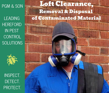 PGM & SON LEADING HEREFORD PEST CONTROL