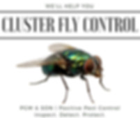 Cluster Fly Control Herefordshire 2019.j