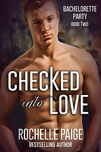 Checked Into Love by Rochelle Paige.jpg