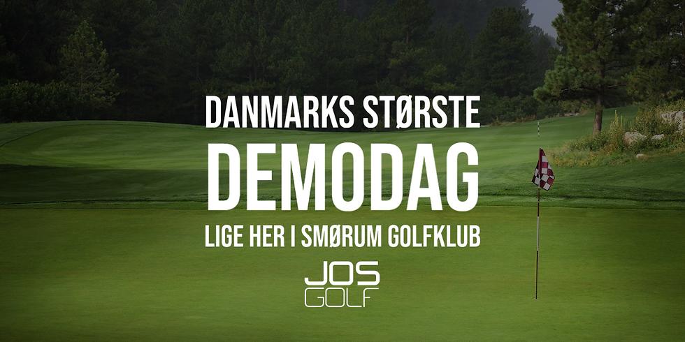 Danmarks Største Demodag