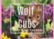 Wolf Cubs updated.jpg
