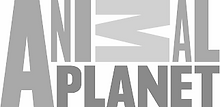 Animal Planet Logo_edited.png