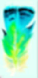 e5wr7-Capture_d_ecran_2019_01_30_a_10_28