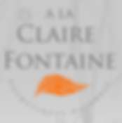 claire fontaine.PNG