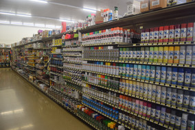 Paint Section
