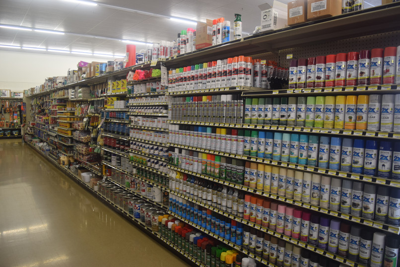 Paint Section