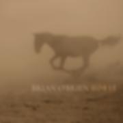 BrianOBrien-Horse.png