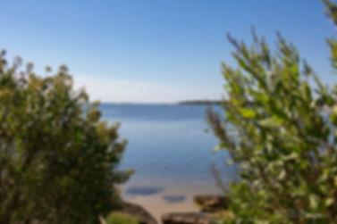 Inlet View Between Bushes (1 of 1).jpg