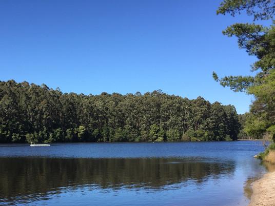 Karri Lake Update