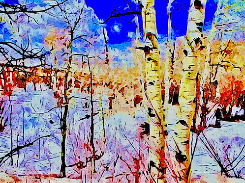 """""""Winter Aspen"""" by Thomas Conway"""