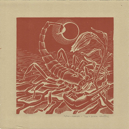 """Siphon & Reservoir"" by Grace Whatley"