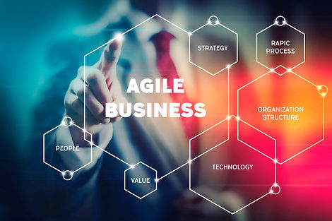 Agile and lean business management conce