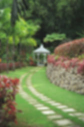 Tropical Gardens Resized.jpg