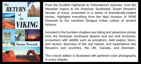 Viking Web Blurb.JPG
