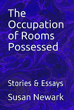 Occupation of Rooms Possessed Cover Web.