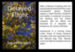 Delayed Flight Web Blurb.JPG