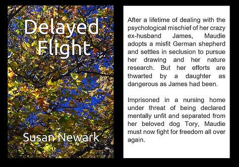 Delayed Flight Web Blurb.JPG