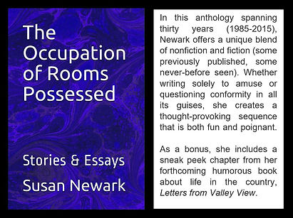 Occupation of Rooms Possessed Web Blurb.