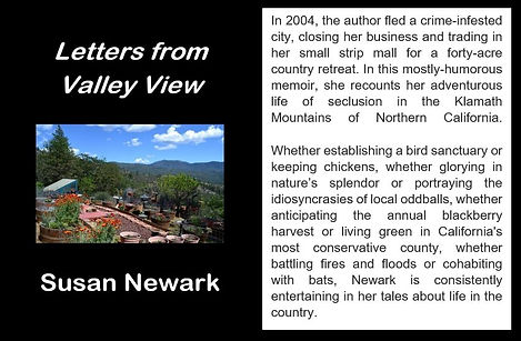 Letters from Valley View Web Blurb.JPG