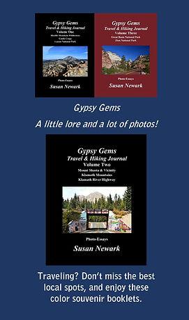 Gypsy Gems web ad.JPG