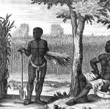 Overvloed en stiltes in de geschiedenis van slavernij en marronage in Suriname in de laatste halve eeuw. In: Hassankhan, Egger, Jagdew, red. (2013-II), 339-383.