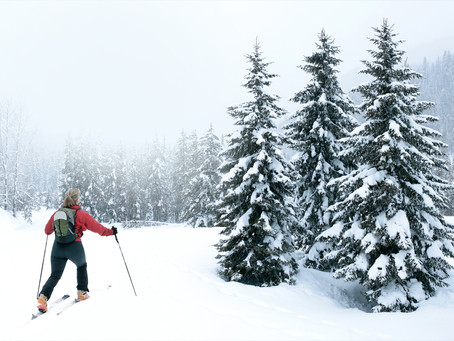 How To Avoid Common Ski Injuries